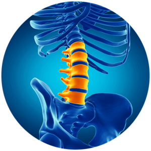 lower back pain in lumbar spine