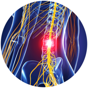 spinal cord injury in thoracic spine