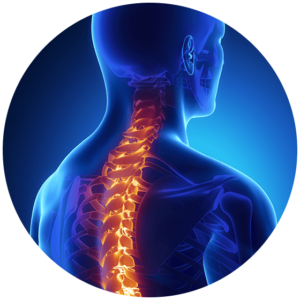 cervical and thoracic spine with spinal injury